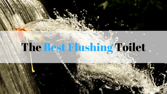 best flushing toilet to swallow golf balls u2013 review